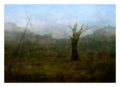 South African Landscape #2 (with sticks and stones) by André S Clements