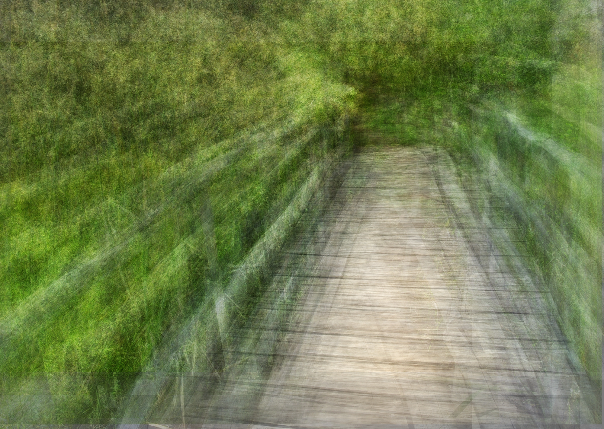 Crossing a bridge Glencairn vlei wetlands – André S Clements